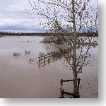Barford Floods 2012
